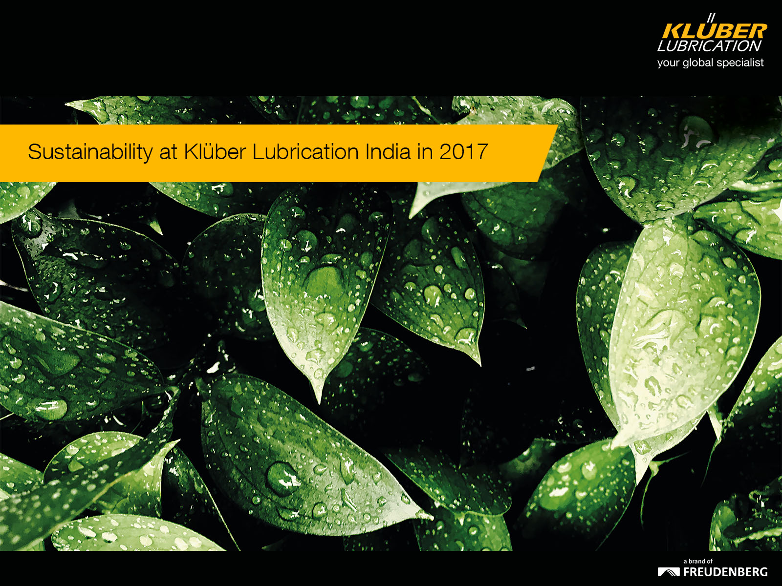 Sustainability at Klüber Lubrication India in 2017